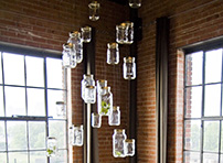 Bug Jar Chandelier